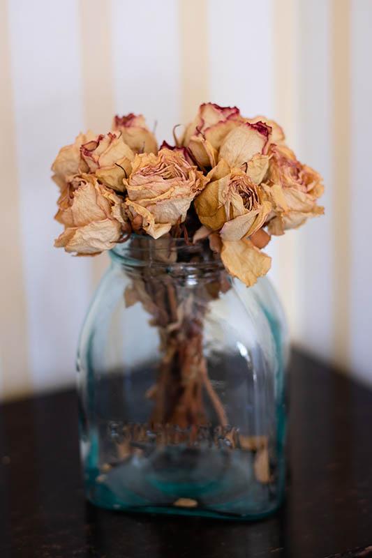 Dry roses in room Markus Hotel Hyppeis
